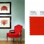 pantone-red-tangerine-tango-shelly-riehl-david-design-blog-hgtv
